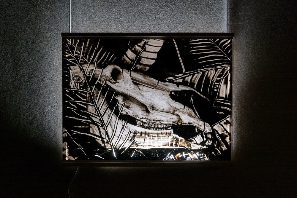Horse Bone in still life  56 x 76 cm