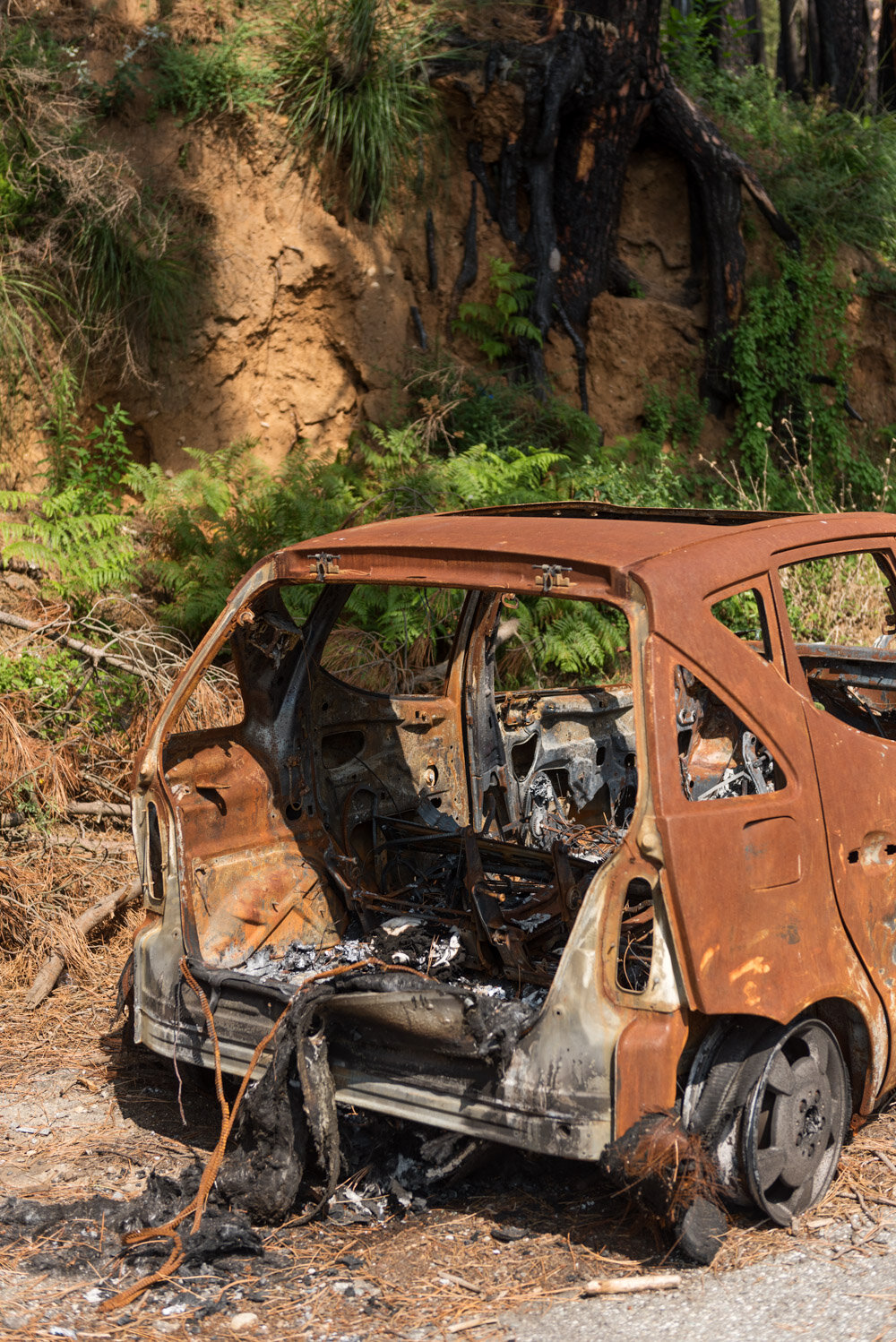 A burned car on the road that connects Regio Calabria to the Sanctuary of Our Lady of Polsi, on the Aspromonte National Park, August 12, 2018.