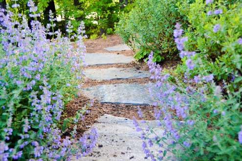 garden_designer
