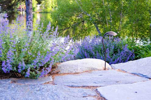 sunapee_landscape_architect