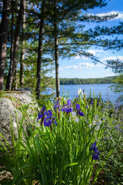 landscape-architecture-lakes-region