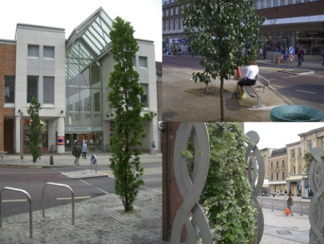 The direct benefits of trees can be equated to millions of pounds worth of savings to health budgets, pollution control and carbon management schemes. A heritage-led regeneration study for Norwich by the New Economics Foundation found that an investment in tree planting of £500,000 would lead to an economic benefit of £17 million, a ratio of 1:34.