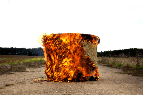 Still from video, Conversion, depicting a bale of Biofuel burning and regenerating endlessly
