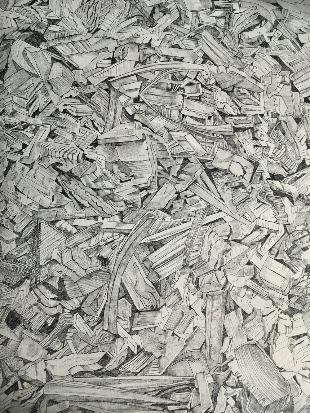 The Wood Pile, a wonderfully detailed and meticulous drawing of biofuel wood-chips, named after Robert Frost's poem, The Wood Pile.