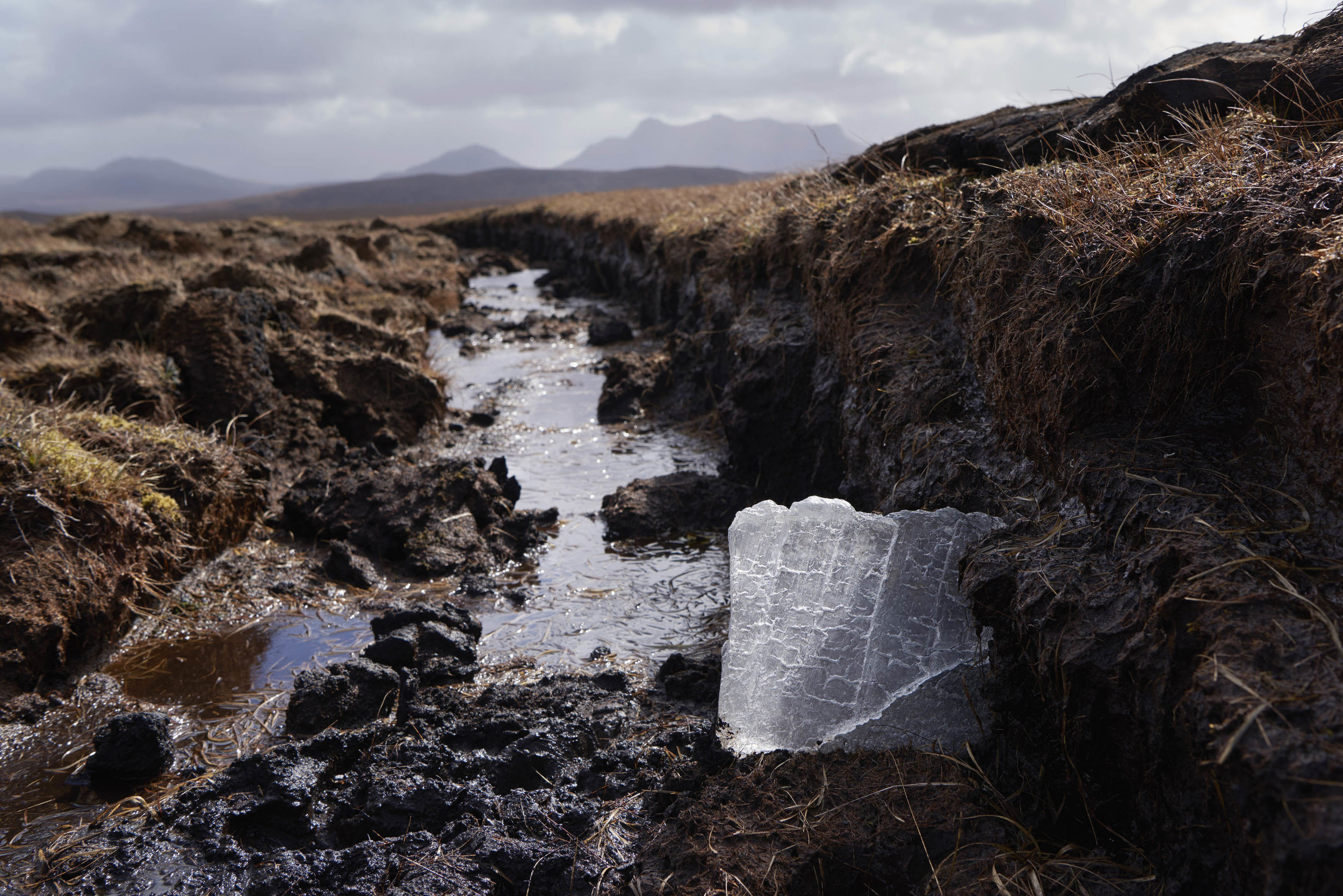 Shaun Fraser,  Flow Country . Scotland
