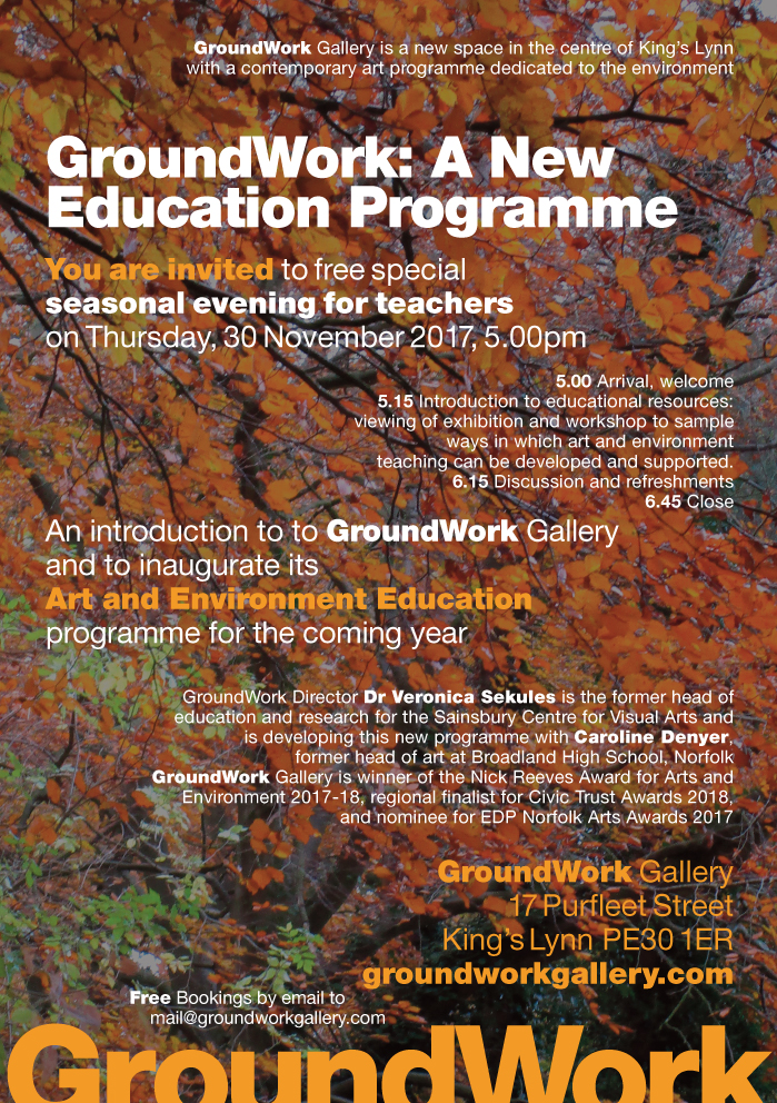 Education flyer final copy.jpg