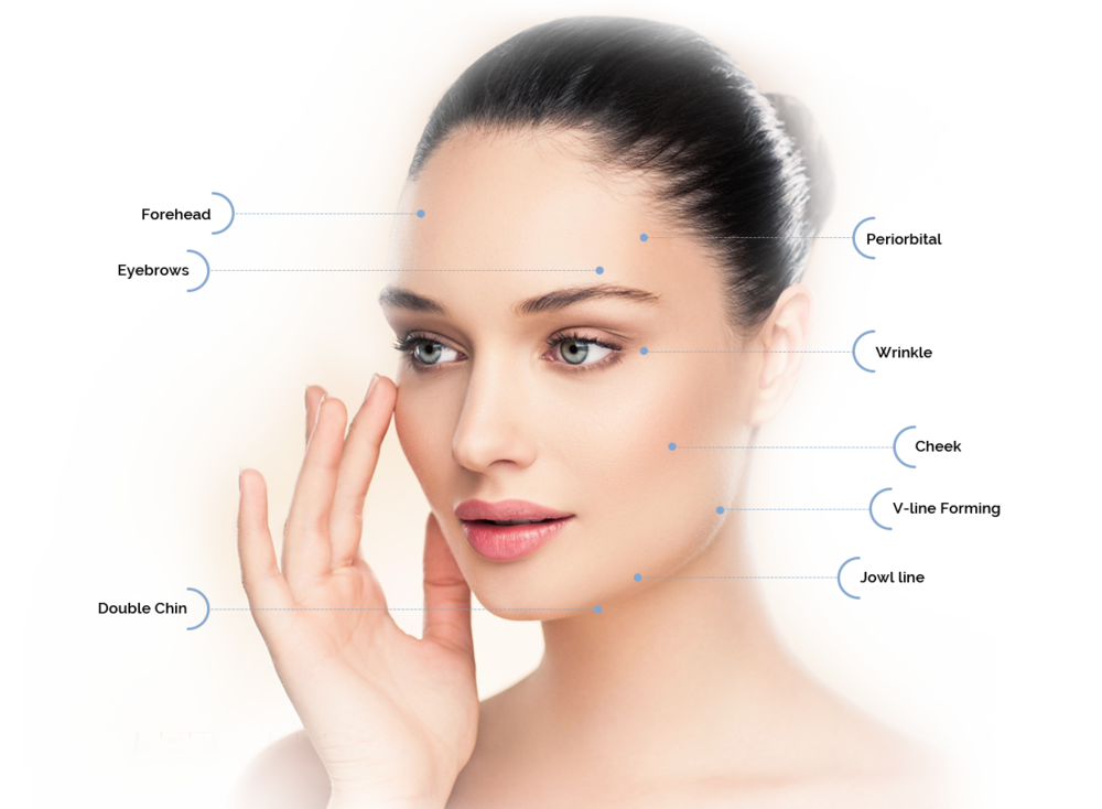 ulfit Cluederm Face treatment areas.png