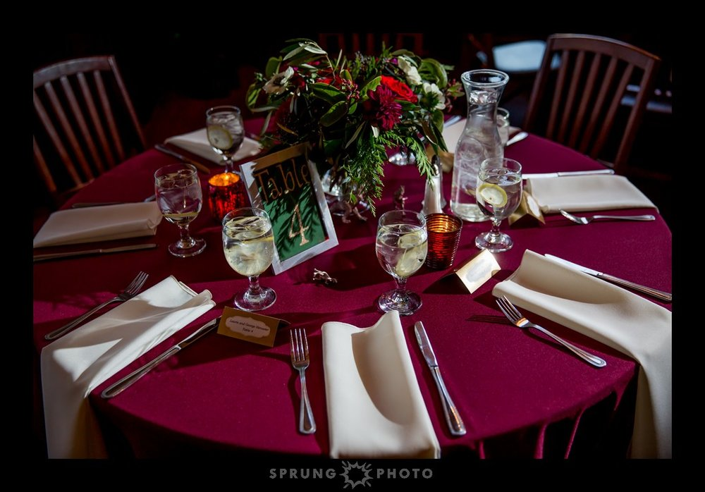 Erika-and-Dan-Redfield-Estate-Glenview-Wedding-Sprung-Photo-557_web.jpg