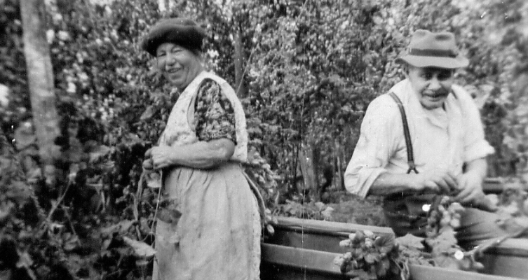 Middle aged woman and a man in a field, laughing