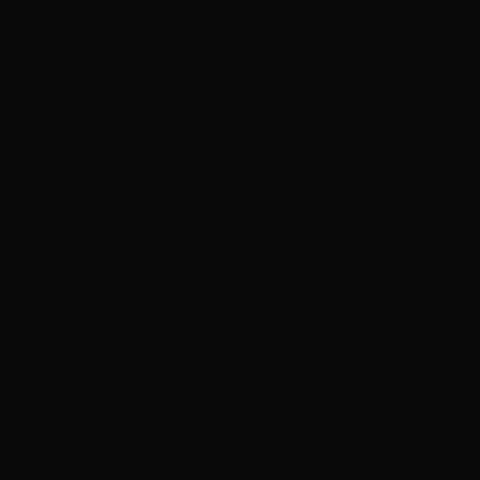 04. Black Shine Lacquer / Nero Eterno