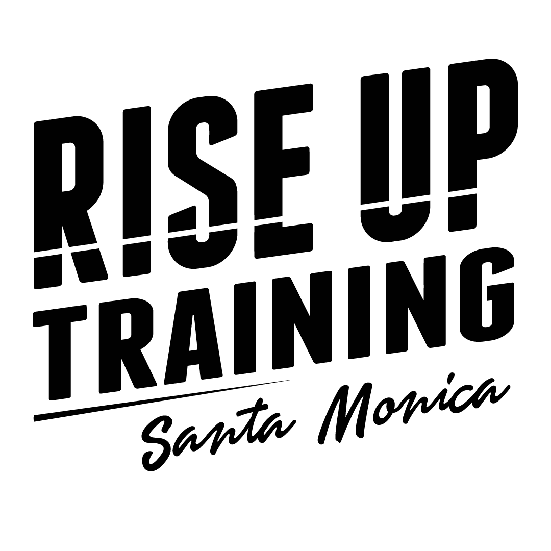 Rise Up Training Santa Monica