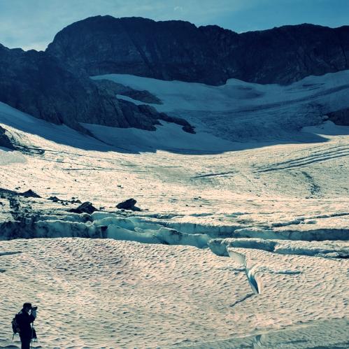 colonial glacier.jpg