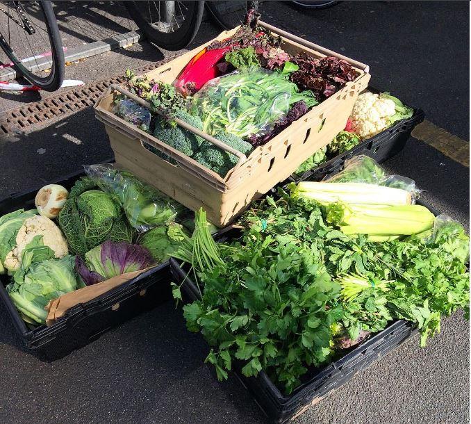surplus veg.JPG