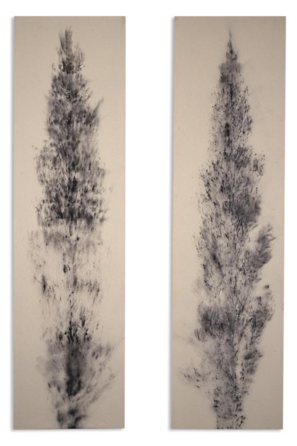 Poplars (x2) 2000