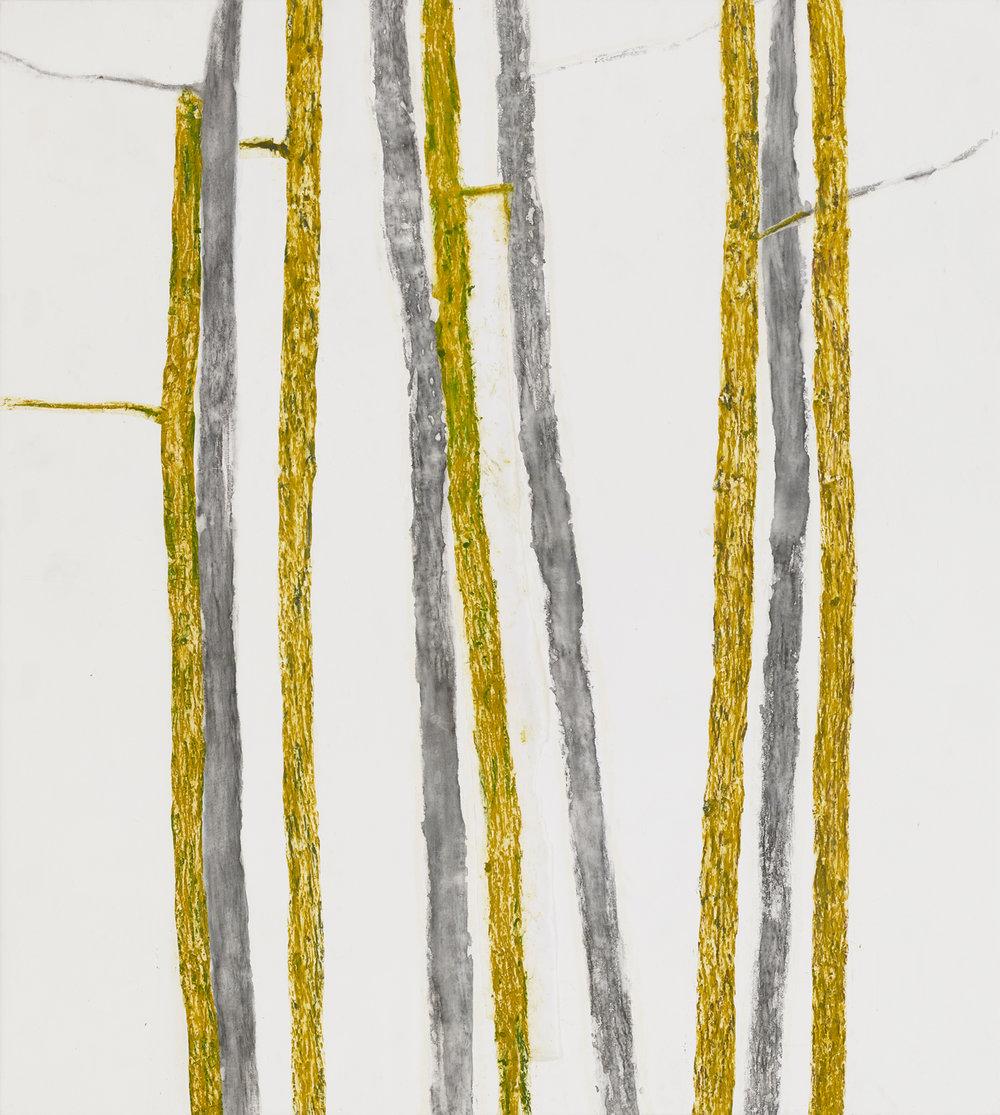 Nine Birches 2014