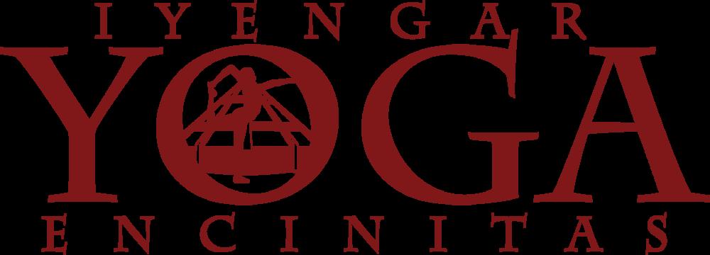 Iyengar Yoga For Beginners Book