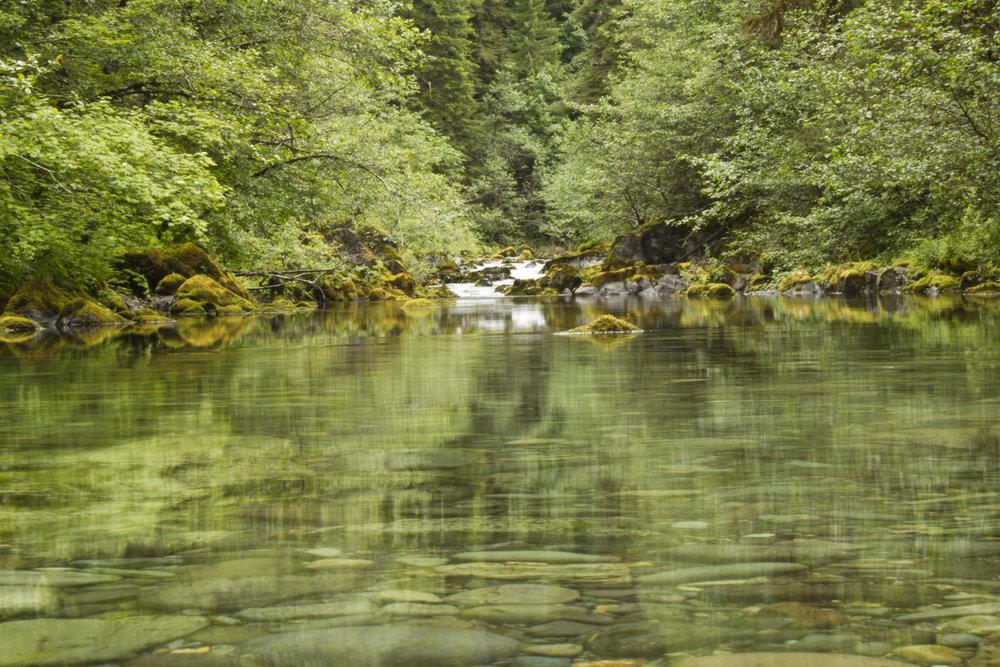 still-river.jpg