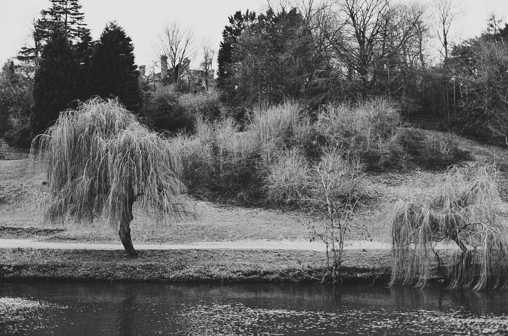 the other side of the river, The Quarry, Shrewsbury, Shropshire, UK