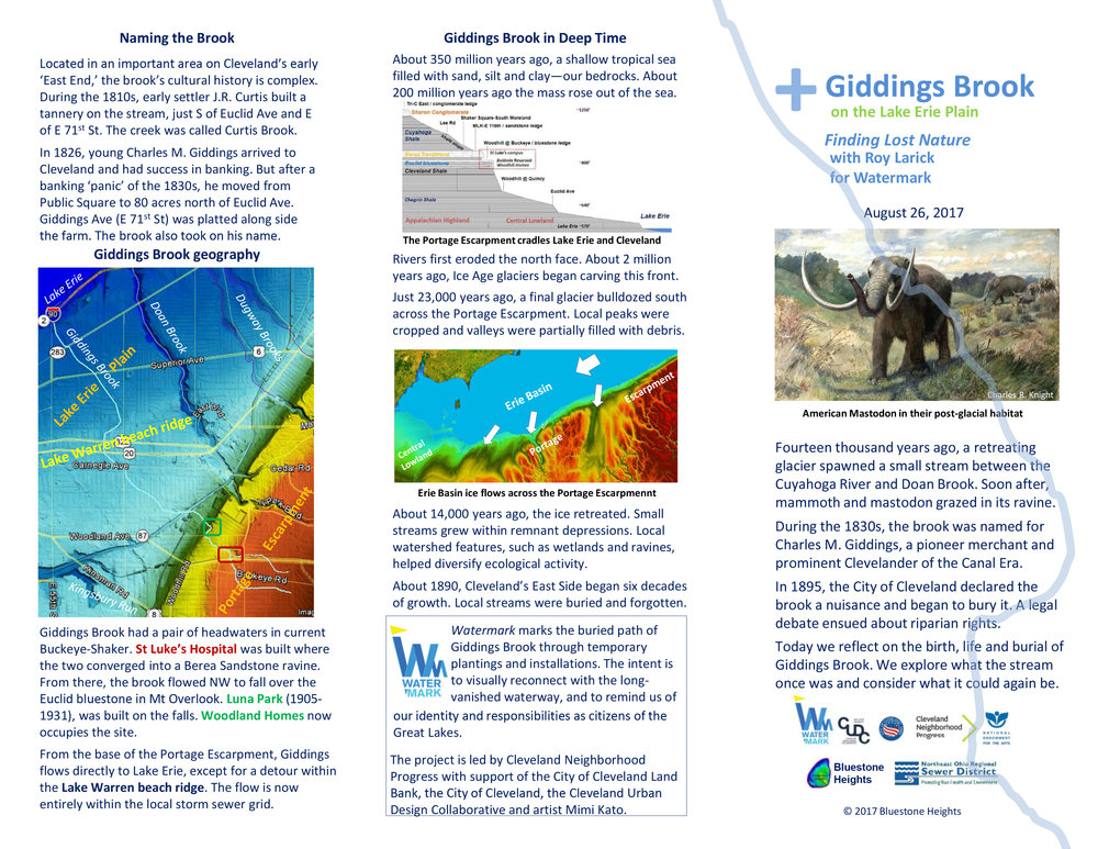 FINAL_Larick-lower-Giddings-trifold-page1.jpg