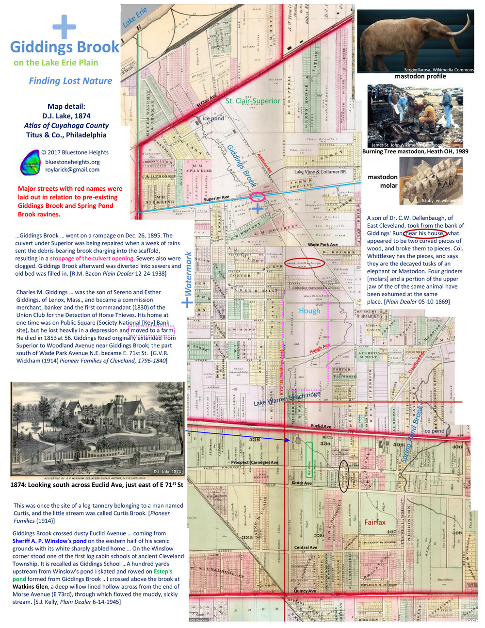 FINAL_Larick-lower-Giddings-trifold-page2.jpg