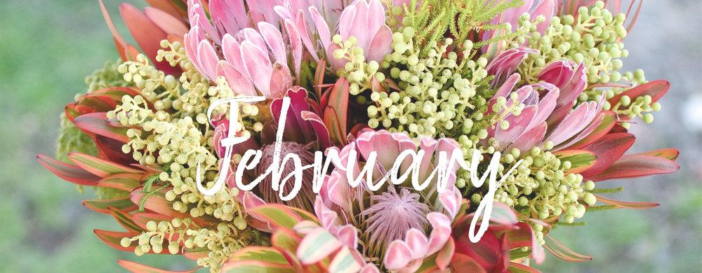 Feb-Banner.jpg