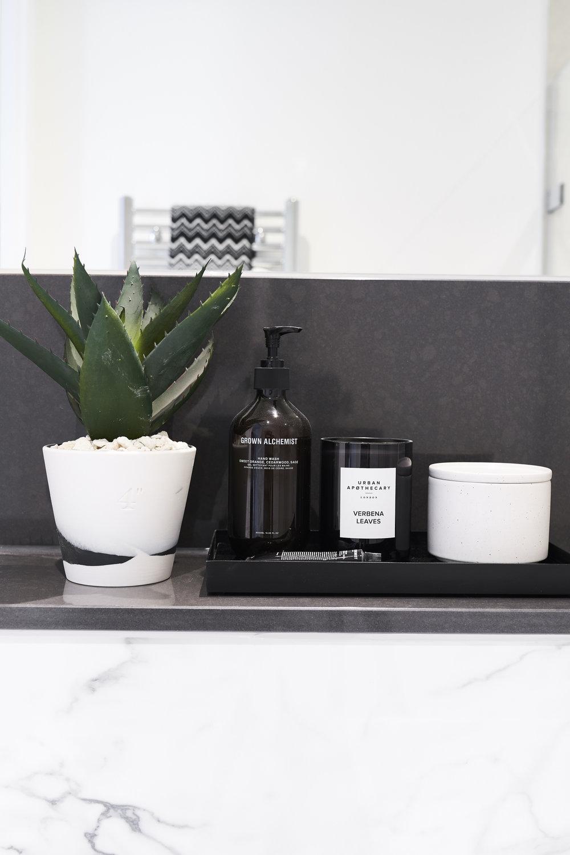 Interior Design. Plant and hand soap