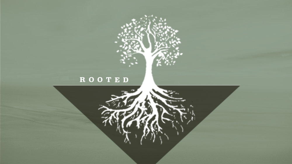 ROOTED 4:0.jpg