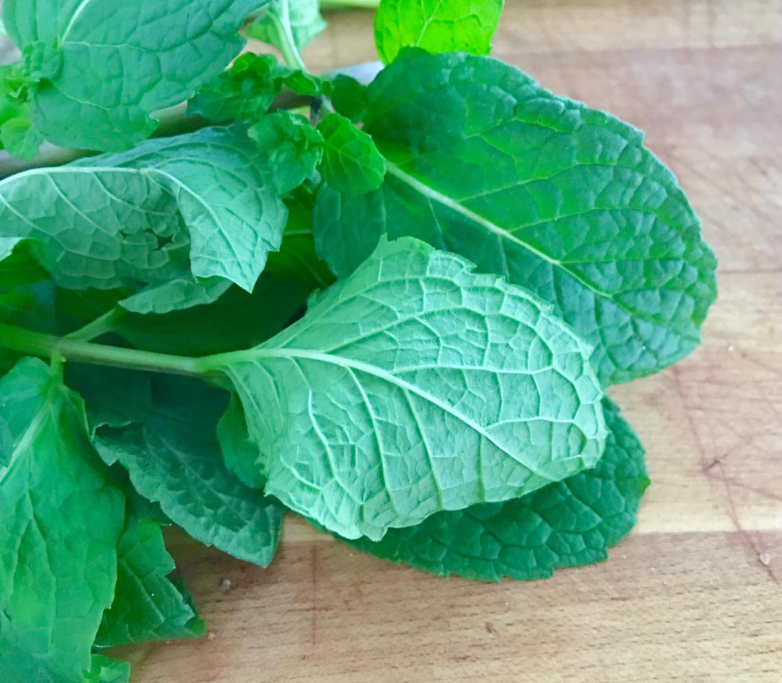 mint-leaf