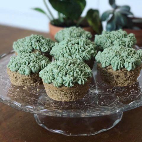 Qualitarian approved Spiru-Mint Cupcakes - gluten free, vegan,