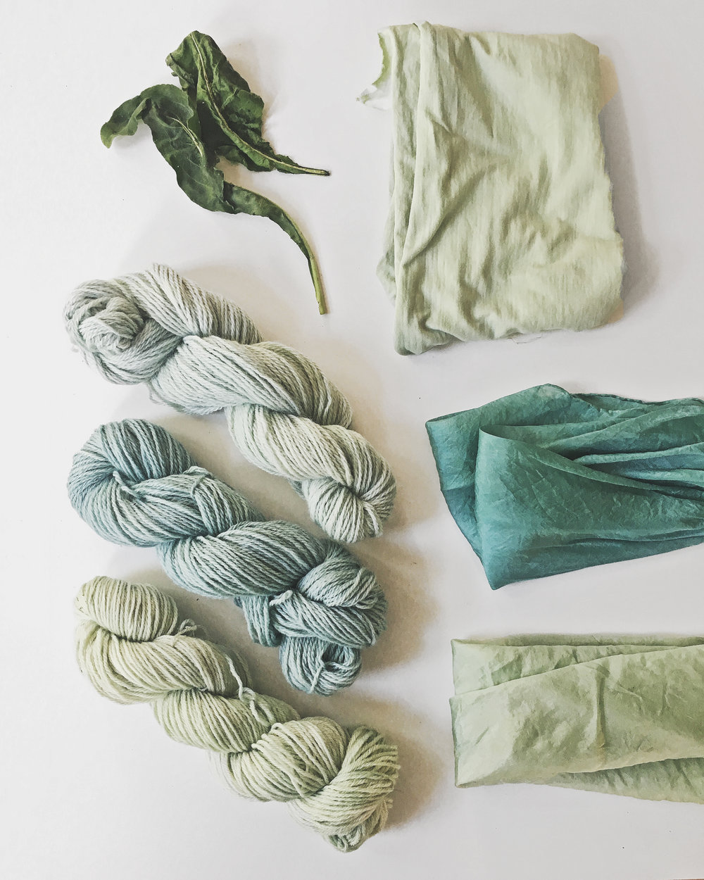 You don't have to make a indigo vat to dye blue. Learn how to use fresh woad or indigo leaves and dye wool or silk without a long and complicated reduction process.