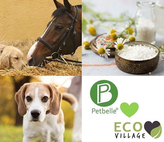 Viac ako pol milióna psích miláčikov na Slovensku. Starostlivosť a láska k nim priviedla Petbelle k myšlienke výroby BIO produktov pre vaše domáce zvieratká. Ich balzam, mydlo a repelent nebudú chýbať ani na Eco Village 2017 @petbelle_sro @eco_village_sk #petbelle #ecovillage #ecolife #ecoskola #bbc1plus