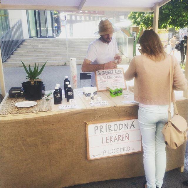 100% poctivé prírodné produkty z aloe vera priamo z rúk slovenského pestovateľa Eduarda Kubalu, zakladateľa ALOEMED.SK doniesol na Eco Village #eco #evovillage #aloemed