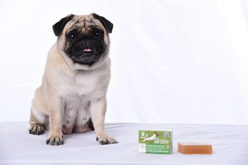 PETBELLE - 100% BIO produkty pre starostlivosť o psov. Vyrábané na Slovensku.Pet Sapo - výnimočné prírodné anti-parazitické mydlo pre psov s trojitým účinkom.Pet Balsam - jedinečný prírodný balzám na ochranu a ošetrenie suchých, popraskaných a drsných labiek Vášho psíka.