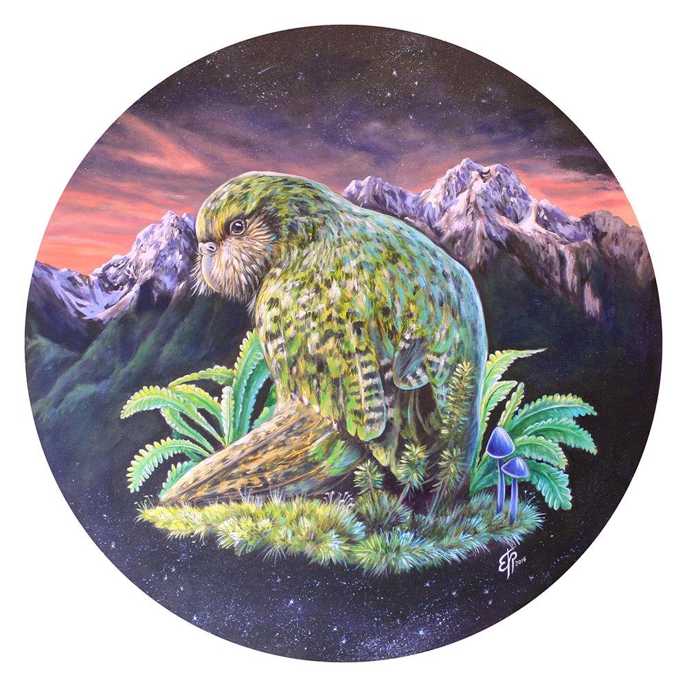 kakapo-final.jpg