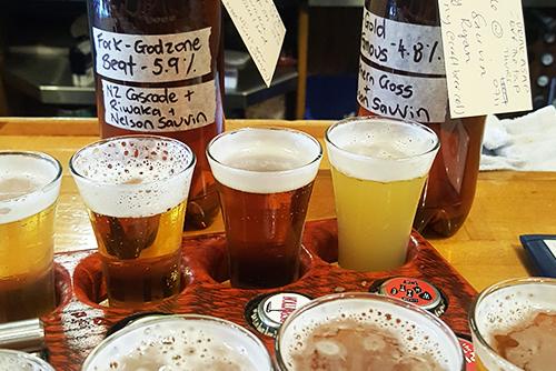 Craft Beer Tastings Wellington