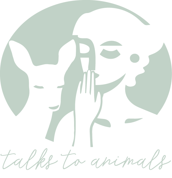Talks To Animals