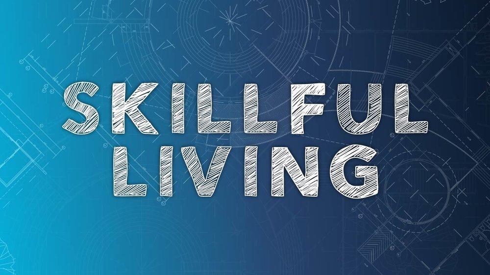 Skillful-Living-series.jpg