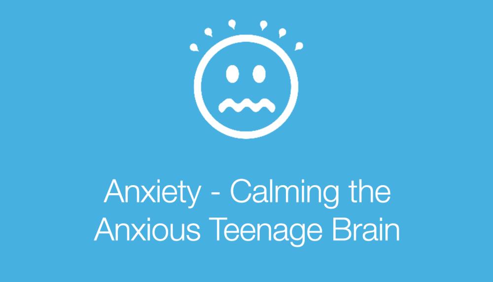anxietycalmingbrain.png