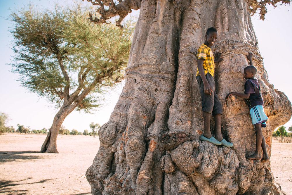 Senegal_2018-184.jpg