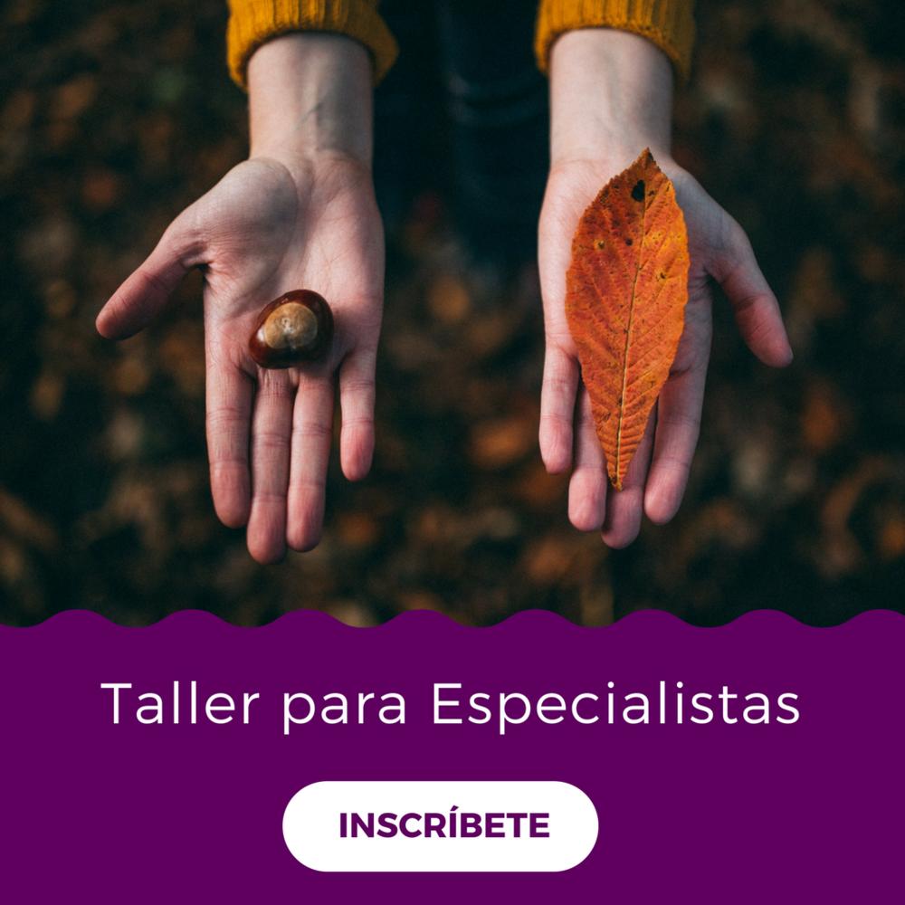 Taller para especialistas.png