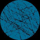Staple-Fiber-for-web.png