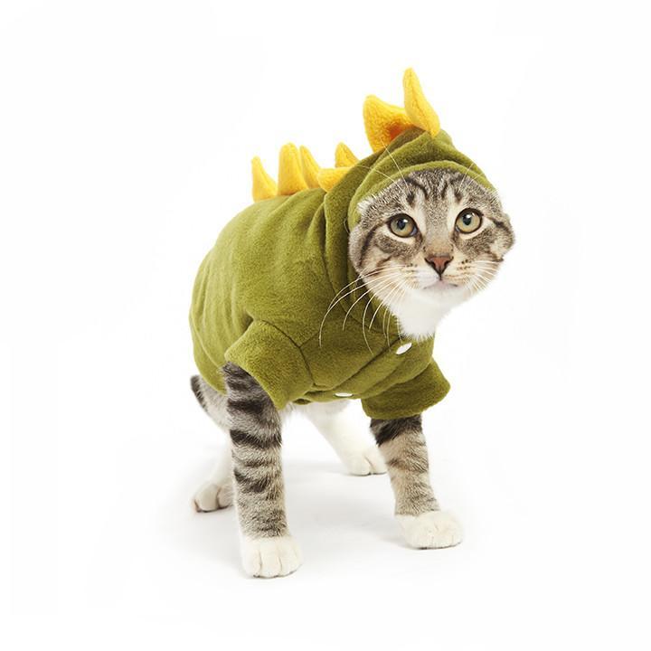 Cat Dinosaur.jpg