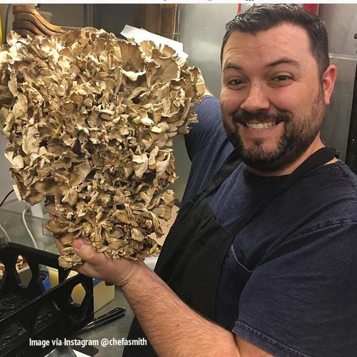 Follow Chef Smith here - Instagram Rockmill Tavern