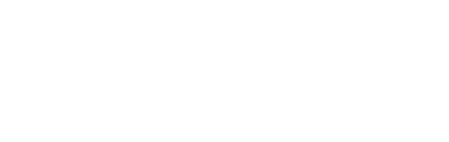 The Barnhill House Toys and Books