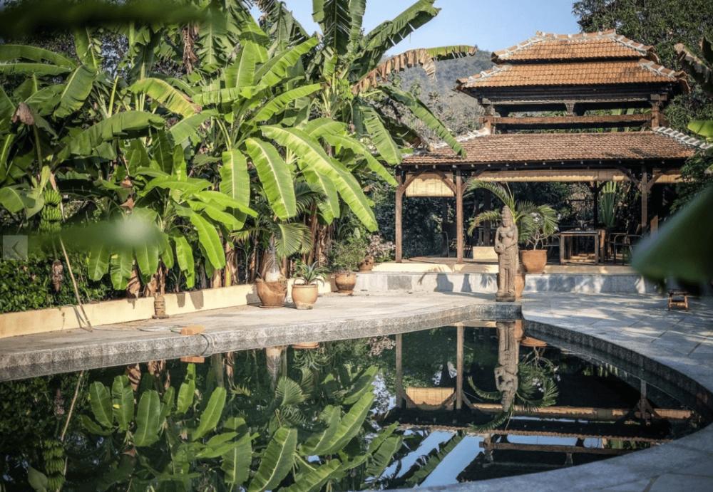 Goa India Holistic Wellness Yoga Retreat Embodied Flow School Tara Judelle.png