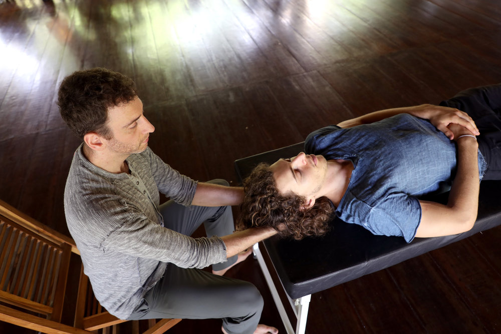 EMBODIED FLOW ADVANCED 500 HR YOGA TEACHER TRAINING Somatic Movement Therapy Cranialsacral.jpg