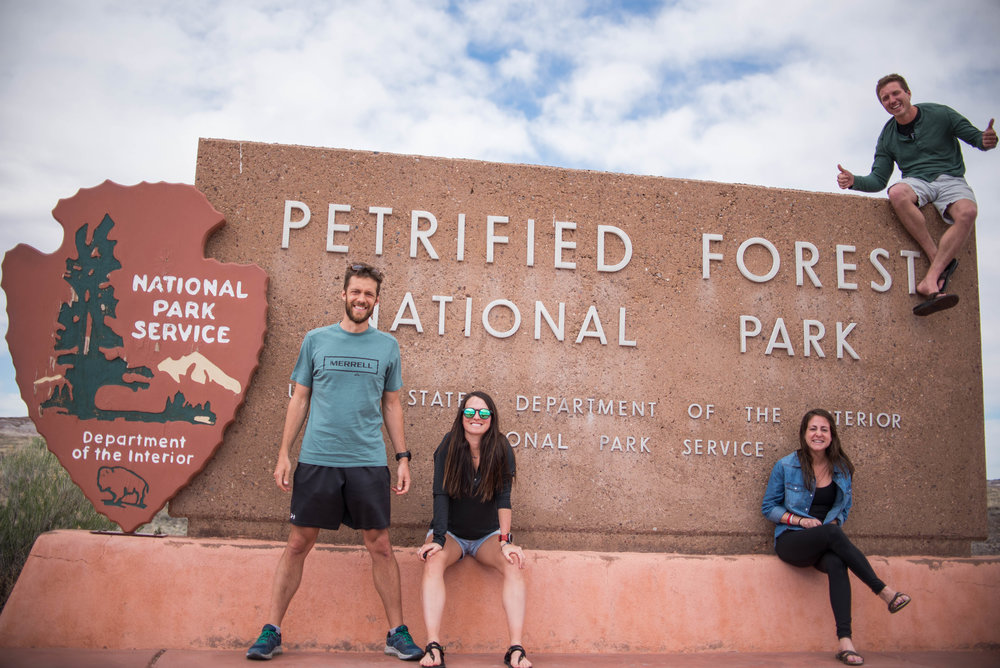 Petrified Forest - an interesting National Park, to say the least.