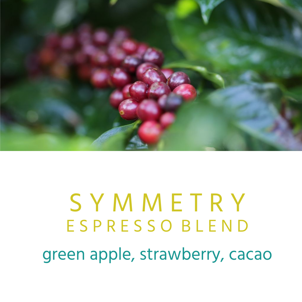 We like our espresso to be symmetrical and we think we nailed it with this blend. It's balanced, vibrant, crisp, bright and sweet. Give it a shot.