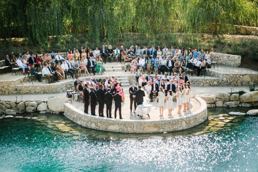 california wedding venue: terra mia vineyard
