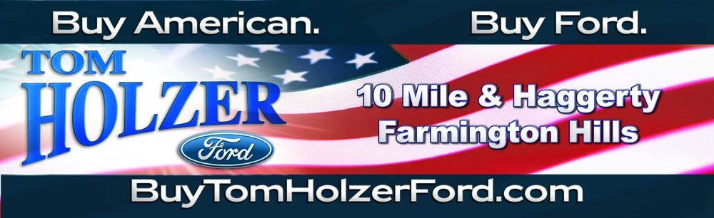 Tom Holzer Flag logo.jpg